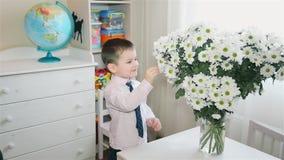 Peu garçon renifle un bouquet énorme des marguerites HD 1080 banque de vidéos