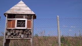 Peu hôtel d'insecte pour l'emboîtement des insectes salutaires pour le verger, 4k banque de vidéos