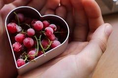 Peu la main de fille faisant les biscuits de f?te traditionnels Cuisson avec le concept d'amour Le jour de m?re, le jour des femm photos libres de droits