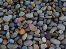 Peu lapide sur la plage image libre de droits