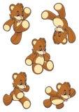 Peu ramassage d'ours Photos libres de droits