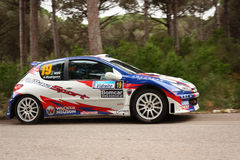 Peugeot 206 S1600 during Rally Vidreiro 2012 Royalty Free Stock Photo