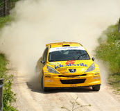 Peugeot 207 raduna l'automobile Fotografia Stock