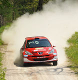 Peugeot 207 rally car. Mauro Trentin of  Italy with Flavio Zanella (co-pilote)    drives his Peugeot 207  during the third stage of the 2010 San Crispino Rally Stock Photos