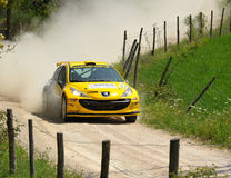 Peugeot 207  rally car. Paolo Pesavento of  Italy with  Giacomo Ciucci (co-pilote)    drives his Peugeot 207  during the third stage of the 2010 San Crispino Stock Photo