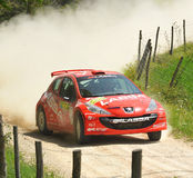 Peugeot 207  rally car Royalty Free Stock Images