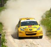 Peugeot 207 reúne el coche Foto de archivo