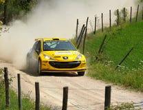 Peugeot 207 reagrupa o carro Foto de Stock