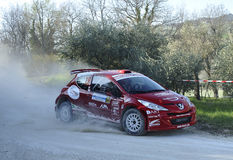 Peugeot 207 Super 2000 Rally Royalty Free Stock Photos