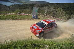 Peugeot 207 Super 2000 Rally Stock Images