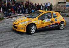 Peugeot 207 raceauto tijdens het ras Royalty-vrije Stock Foto's