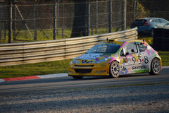 Peugeot 207 rally car at Monza Stock Image