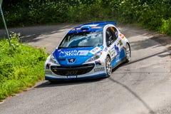 Peugeot 207 S2000 Lizenzfreies Stockfoto