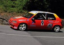 Peugeot 106 samlar Royaltyfri Fotografi