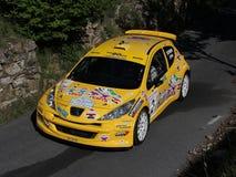 Peugeot 207 super 2000  rally car Royalty Free Stock Photos