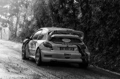PEUGEOT 206 WRC 1999 w starym bieżnego samochodu wiecu legenda 2017 Obraz Stock