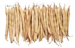 Peulen droge bonen stock afbeelding