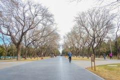 Peuple chinois ou touristin Unacquainted marchant en parc ou Tiantan du temple du Ciel dans le nom chinois dans la ville de Pékin images libres de droits
