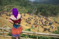 Peuple de H'Mong de fleur du Vietnam Photographie stock libre de droits