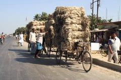 Peuple de l'Inde Photographie stock