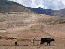 Peuple du Pérou Photo libre de droits