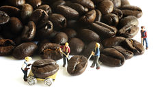 Peuples miniatures avec le grain de café Image stock