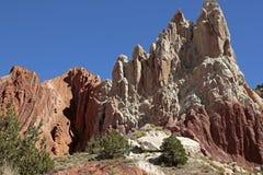 Peuplier monument national de Canyon Road, Escalante d'escalier grand, Utah, Etats-Unis photos stock