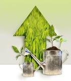 peut l'arrosage de plantations Photo libre de droits