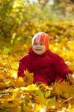 Peuter in de herfstpark Stock Foto's