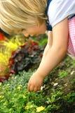 Peuter met bloem in park Stock Afbeelding