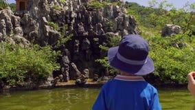 Peuterjongen die macaqueapen bekijken die op rotsen springen Aapeiland, Vietnam stock videobeelden