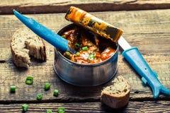 Peuvent les poissons en sauce tomate servie avec du pain Photo libre de droits
