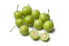Peuvent les prunes d'Erik Image stock
