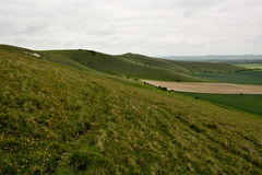 Pewsey Downs National Nature Reserve Royalty Free Stock Photo