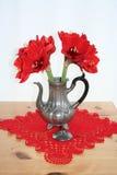 Pewter może z czerwoną Amaryllis obraz stock