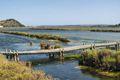 Peyriac-de-Mer (Languedoc-Roussillon, France): pond Royalty Free Stock Photography