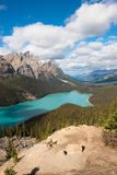 Peyto湖,亚伯大,加拿大 库存图片