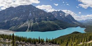 Peyto湖,亚伯大,加拿大 库存照片