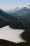peyto озера стоковое изображение rf