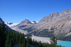 peyto ледникового озера Стоковое Фото