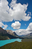 湖peyto 图库摄影