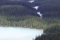 Peyto湖 图库摄影