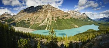 peyto озера Стоковое фото RF