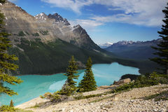 peyto för banff Kanada lakenationalpark Arkivfoton