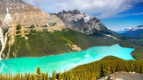 peyto för banff Kanada lakenationalpark Arkivfoto