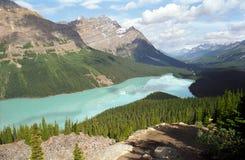 Peyto Jezioro Zdjęcie Royalty Free