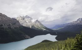 Peyto jezioro w Alberta Kanada Zdjęcie Stock