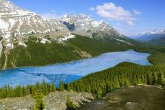 Peyto jezioro w Kanadyjskich Skalistych górach obraz stock