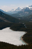 Peyto Lake. Beautiful scenic landscape of The Canadian Rockies, Peyto Lake Royalty Free Stock Image