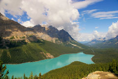 Peyto Lake. Banff NP / Canada Royalty Free Stock Photo